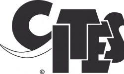 CITES_logo_high_resolution