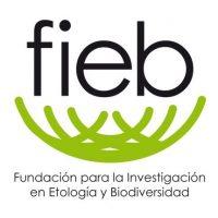 FIEB 3